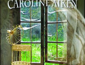 Broken Wings Heal – Cover Art